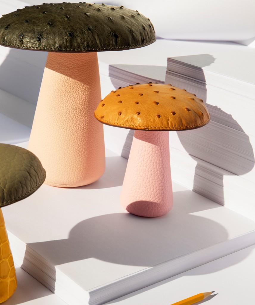 Mushrooms paperweight photo - Credits Jonathan Frantini
